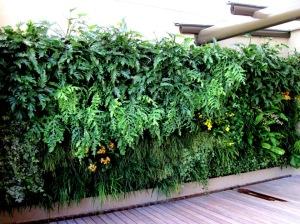como-montar-um-jardim-vertical-baratinho-4