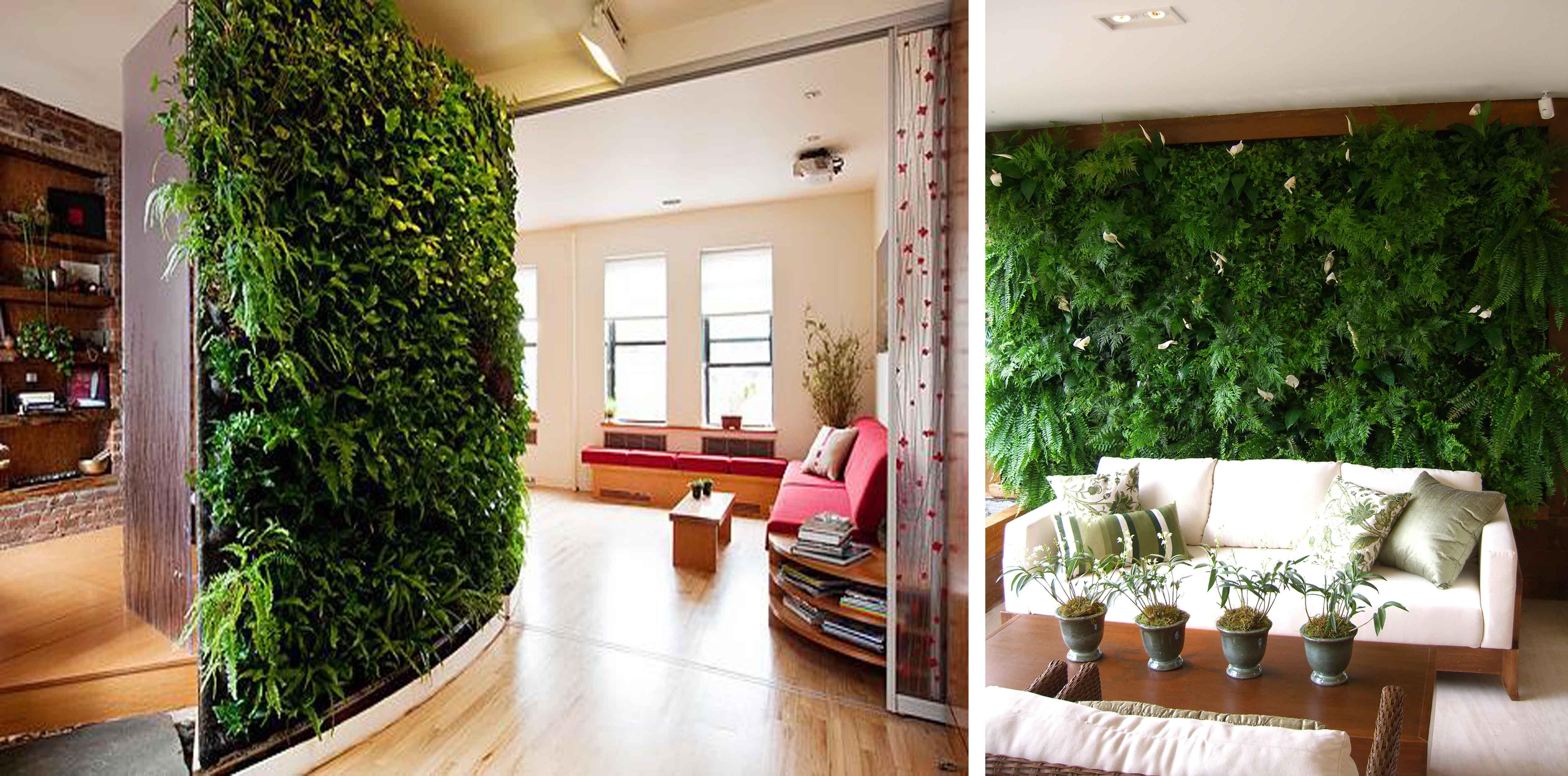 jardim vertical externo : jardim vertical externo:Jardim Vertical